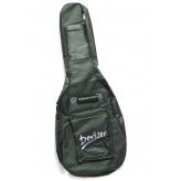 Чехол для гитары акустической эстрадной утепленный Deviser PG-A12-41
